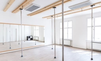 Studio Gympole Removable
