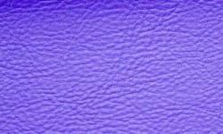 Violet 505